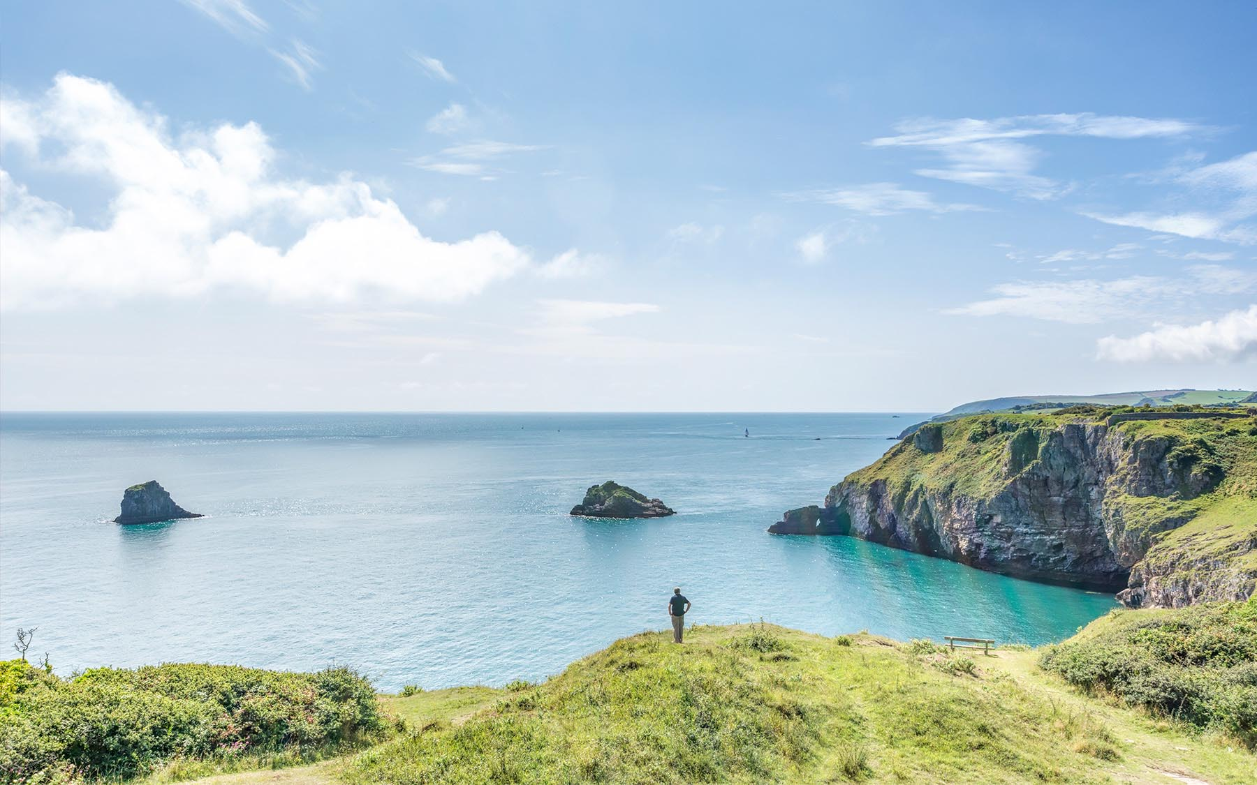 Berry Head View