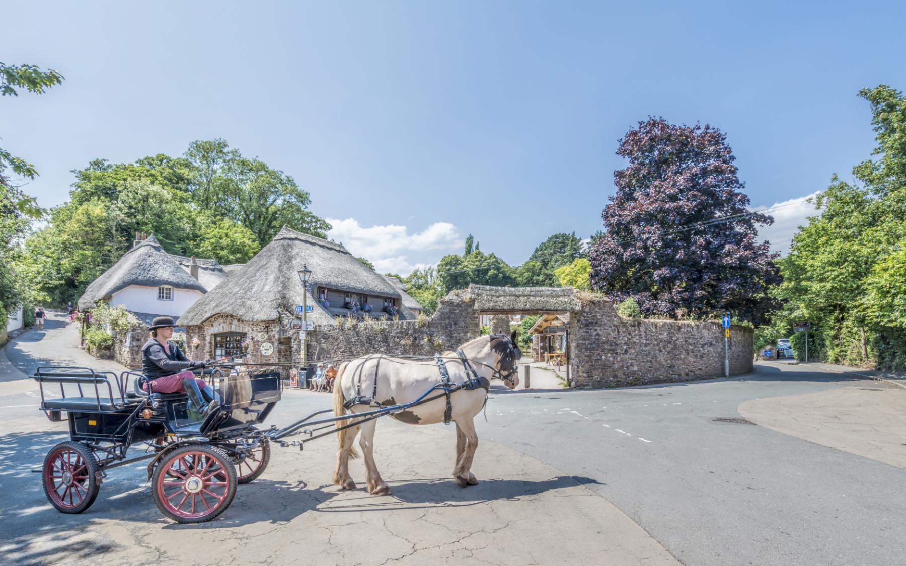 Cockington horse and carriage