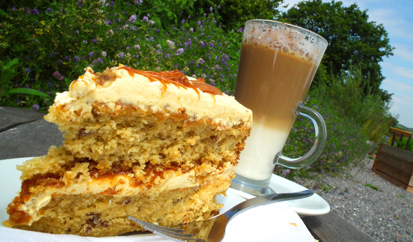 Occombe Farm coffee and cake