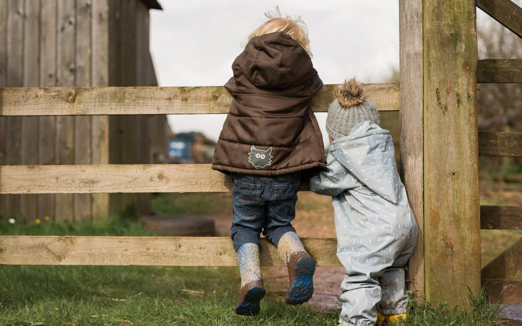 Toddlers at Occombe Farm